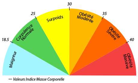 IMC - échelle